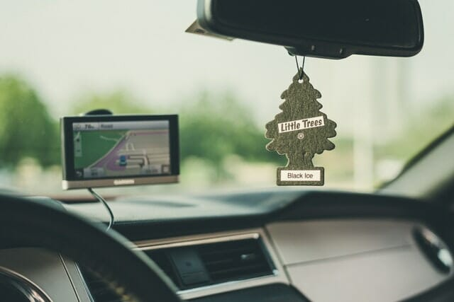 Best Air Fresheners For Homes With Pets
